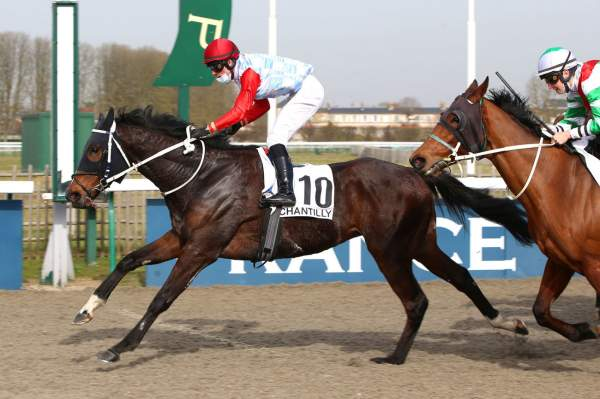 La photo de DREAM IN NORMANDY
