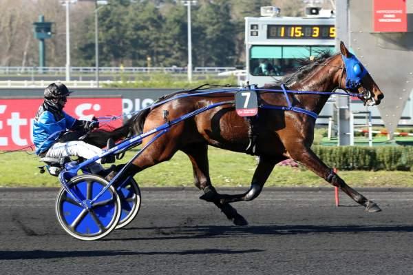 Photo de ETONNANT cheval de TROT ATTELE