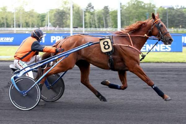 Photo de EASTWOOD PARK cheval de TROT ATTELE